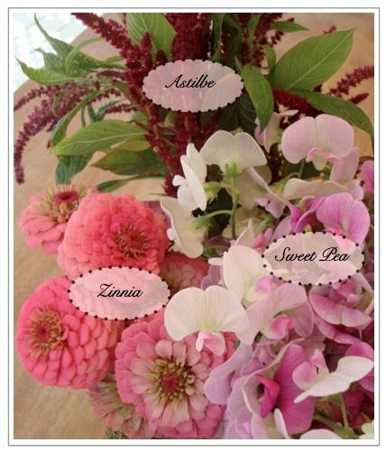 flowers blog
